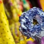 Flores Florsali (6)